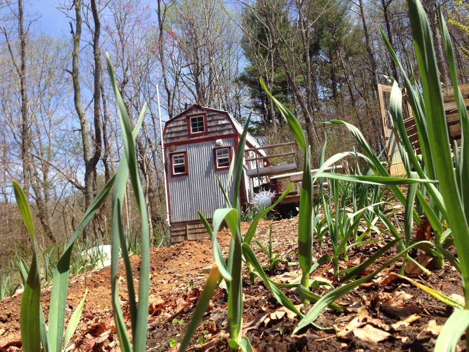 Garlic and the Tiny House