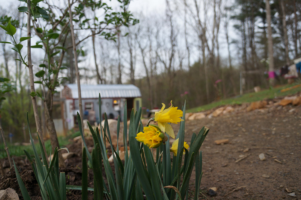 Tiny House in Spring2014